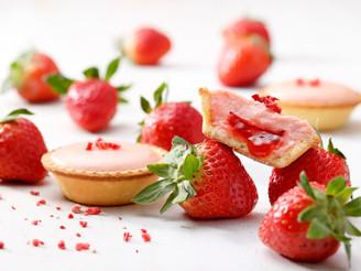12月季節限定!!草莓起士塔,苦甜巧克力起士塔