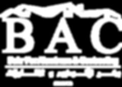 BAC Company Profile v-1.png