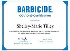 Barbicide Covid 19.jpg