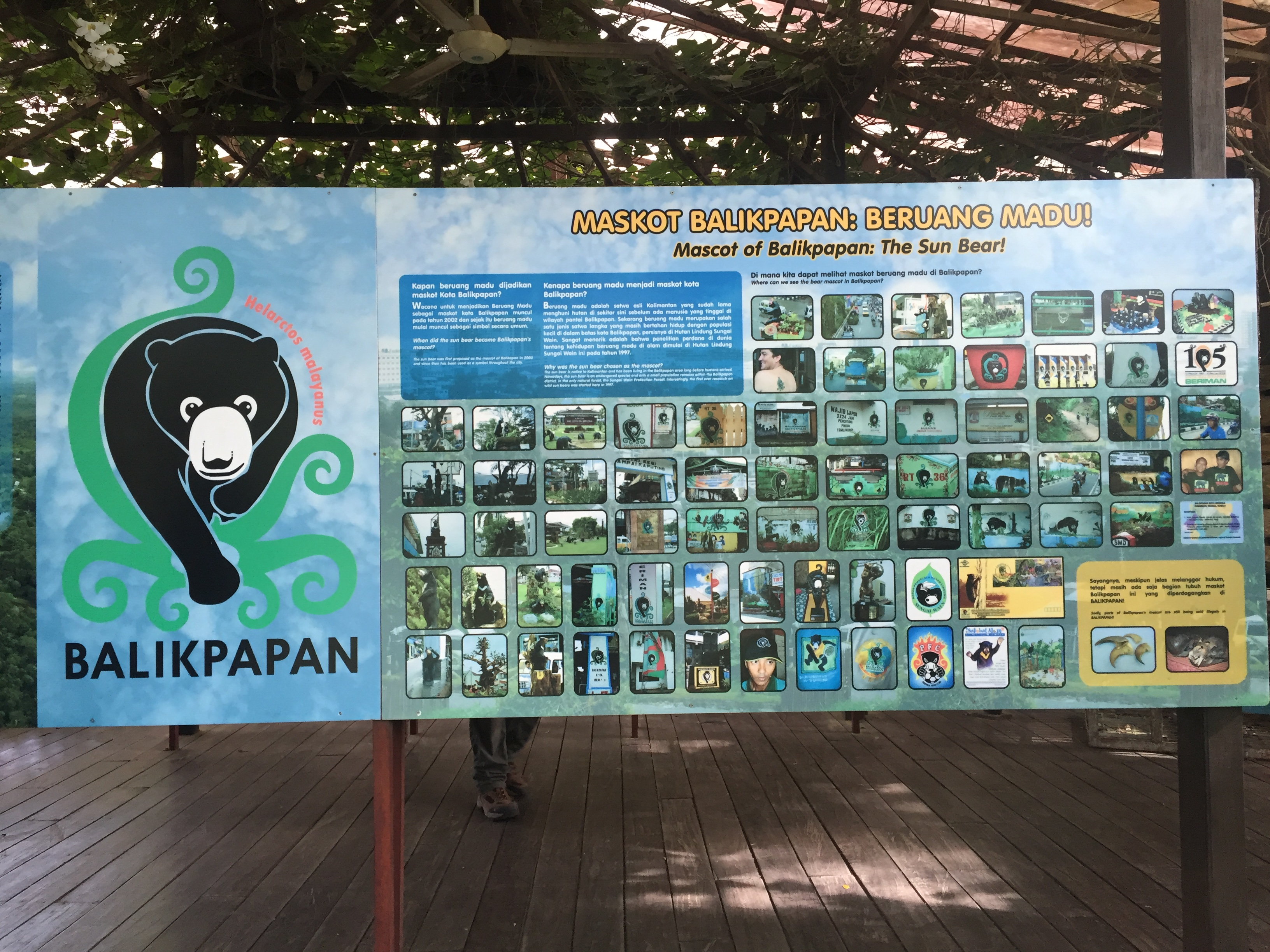 Sun Bear Conservation center