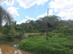 Another view of Orangutan Island