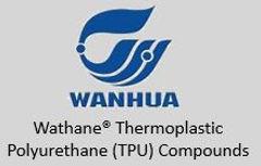 Wanhua website.JPG