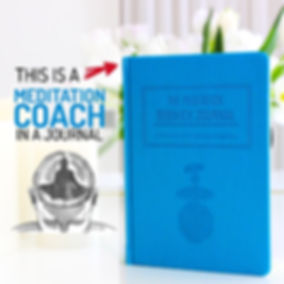 medsj - blue coach.jpg