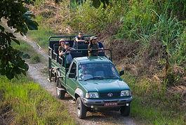 jeep-safari.jpg