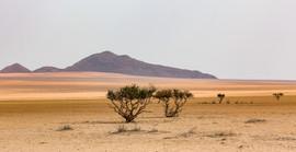 Namibia 2017-74.jpg