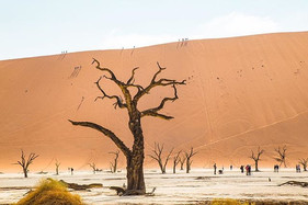 So why all the photos of #Namibia you as