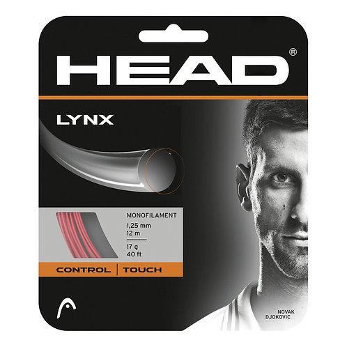 Head Lynx