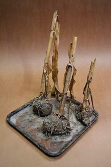 Escultura orgánica