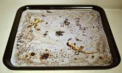 Residuos de chapapote (2010)