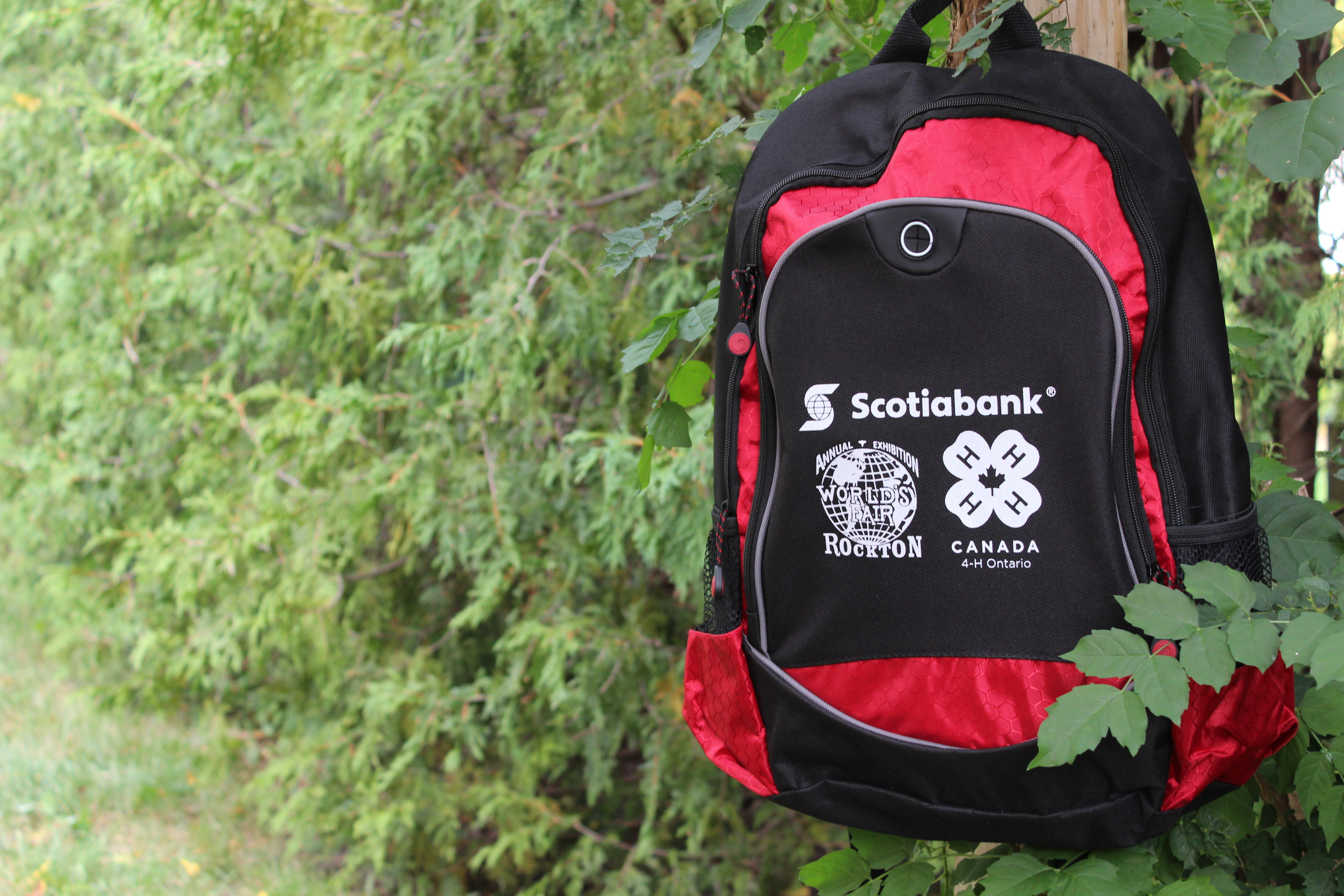 BACKPACKS FOR ROCKTON WORLD'S FAIR