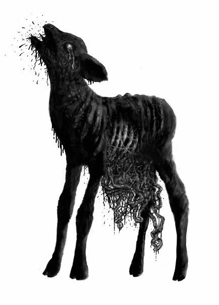 Stewert Cole Animal Nation web.jpg