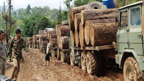 Myanmar investigated by EIA