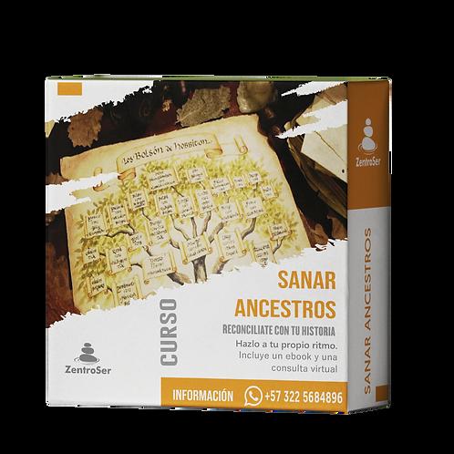 Curso Virtual Sanar Ancestros + Consulta