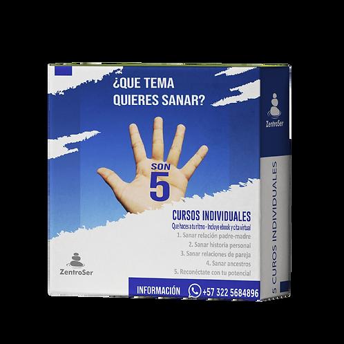 5 Cursos Individuales en un mismo paquete