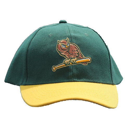 Green and Yellow Owls Hat