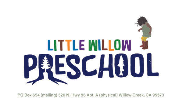 Little Willow Preschool