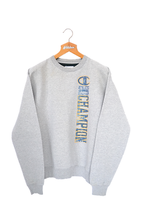 Champion USA grey Sweatshirt L