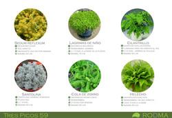 Paleta vegetal