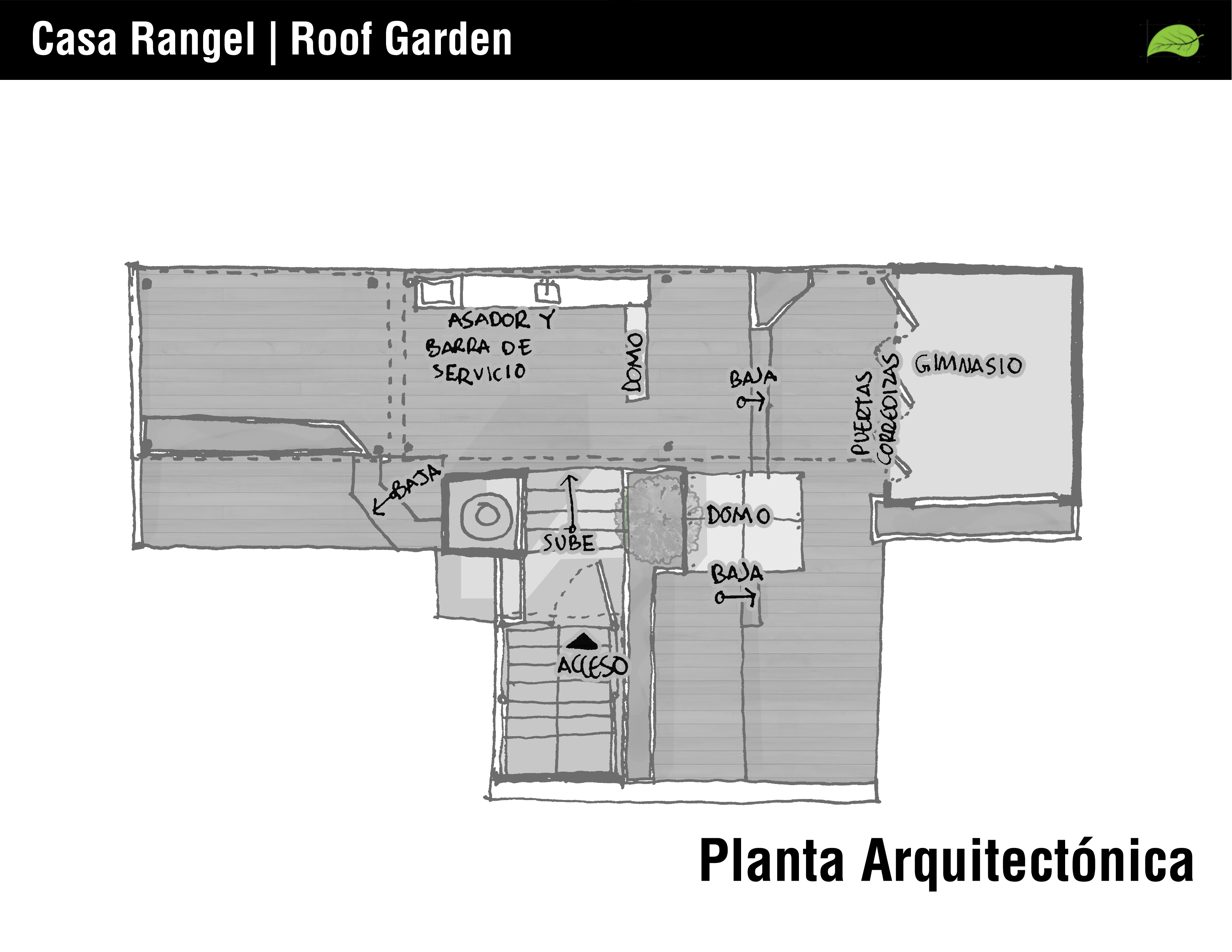 14 planta indicaciones