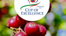 Cup of Excellence 2020 Ethiopia