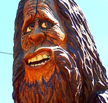Bigfoor chainsaw carving
