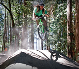 WildRose Mountain Bike