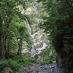 WildRose Flood Falls