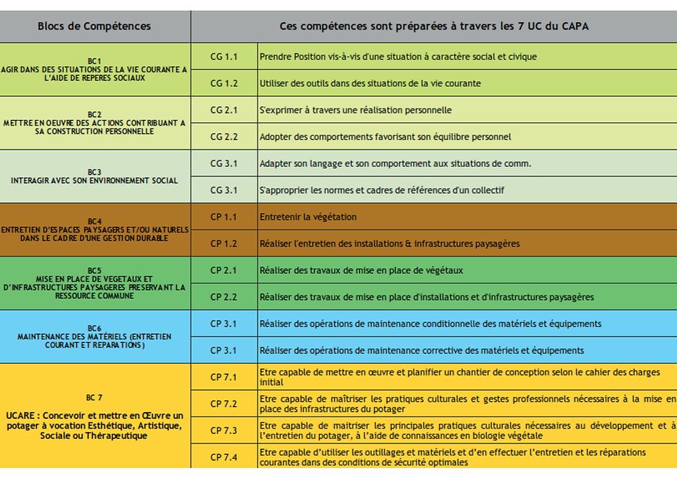 PLAN FORMATION CAPA V3-1.png