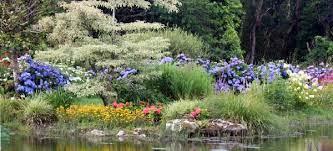 Stage Jardin botanique/Pépinières de collection