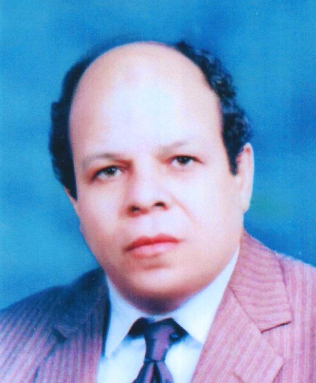 Mr. Magdy A. Abbas