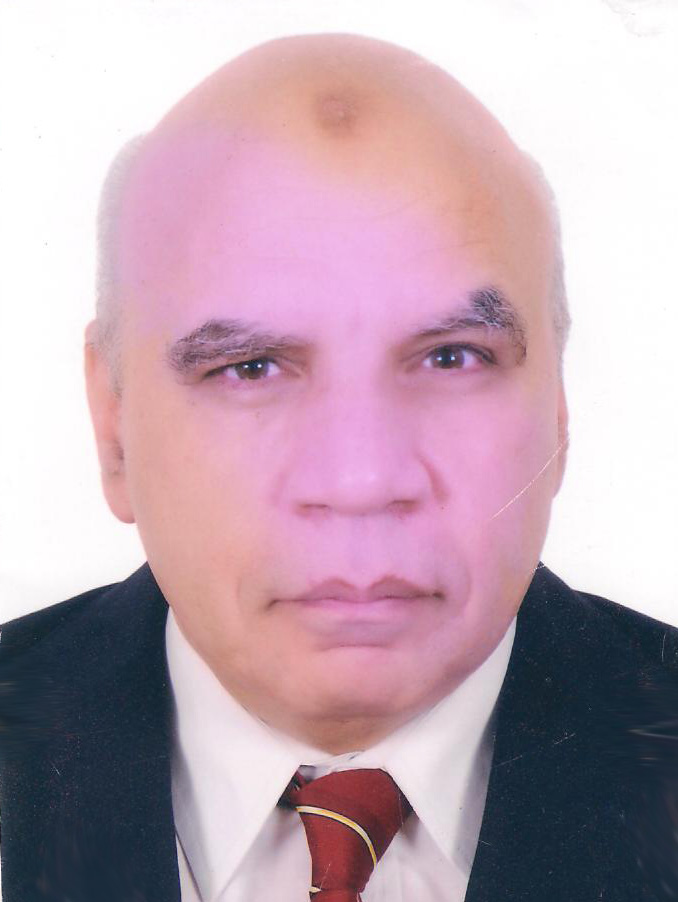 Mr. Ahmed Hussein