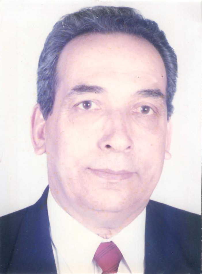Mr. Mohamed A. Rahman Mahran