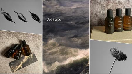 大自然收入瓶中→Aesop 『虛實之境系列』3款新香微醺上市,酒窖、老木頭、苔蘚、意想不到的療癒香都在其中!