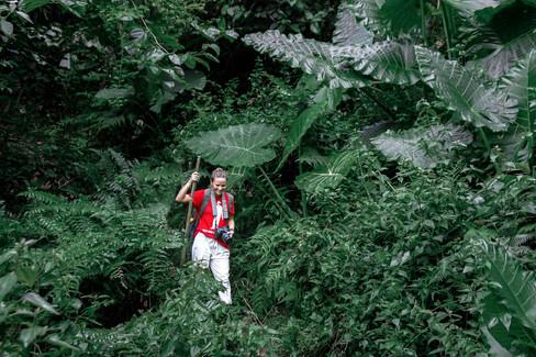 Randonnée dans la jungle du Laos