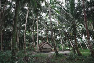 The Mentawai Islands - An authentic trip