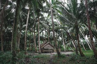 Les Iles Mentawai - Un voyage authentique