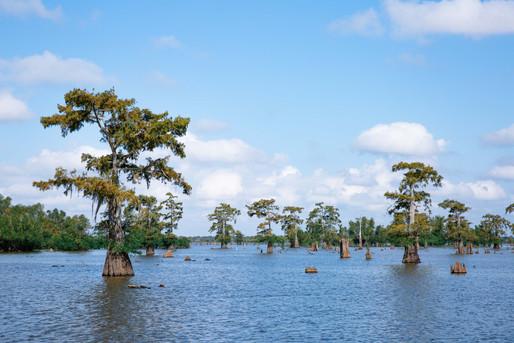Découverte de la Louisiane