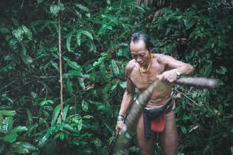 Voyage aux Iles Mentawai