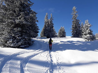 ski de r.jpg