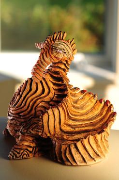 Hippocampus saurus,2008