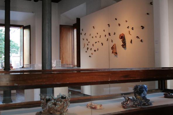 Exposição Ecos da Pele, 2008