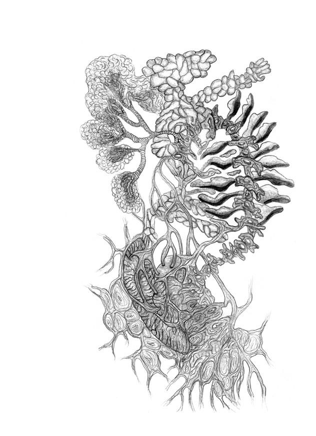 Estruturas biológicas, 2015