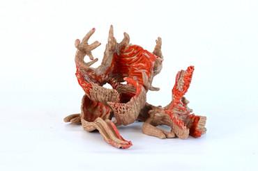 Corallium rubrun (da série), 2012