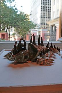 Sphenoda brunspinosa, 2006
