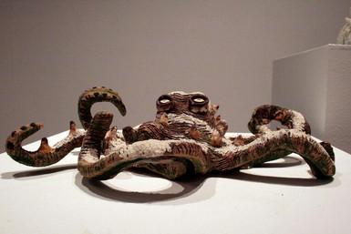 Octopus nevata, 2006