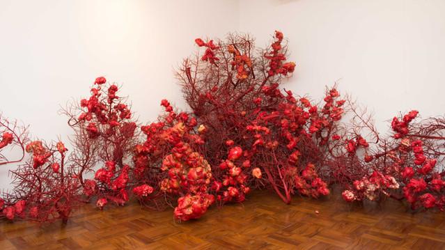 Vermelhos, 2017