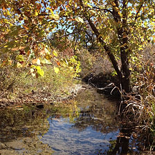 greatPlains_kings_creek_system_edited.jp