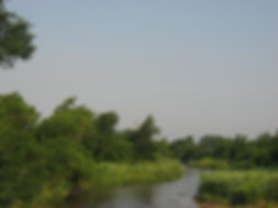 greatPlains_ninnescah_river_2012.JPG