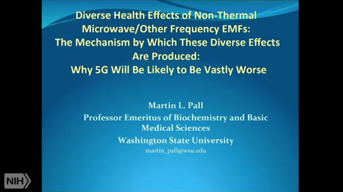 Dr Martin Pall and 5G