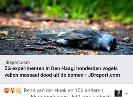 5G Test in Holland Results in Bird Deaths